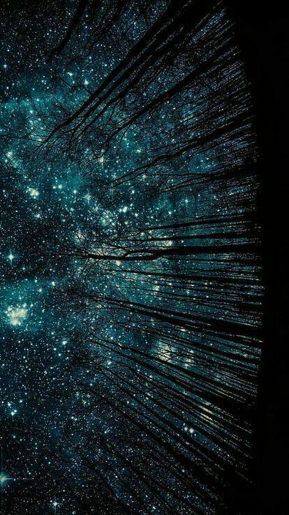 (Cielo.  Estrellado)123
