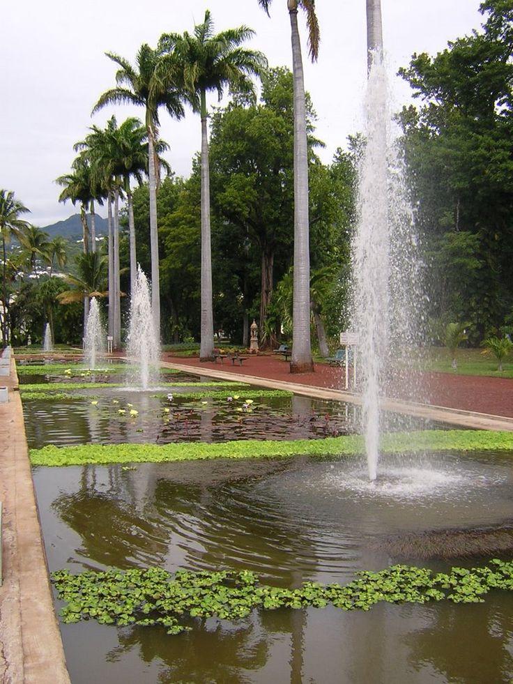 Jardin de l 39 etat st denis l 39 oc an indien pinterest for 9 jardin fatima bedar saint denis