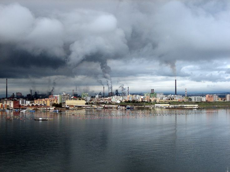 Il comportamento del Governo italiano lascia con l'amaro in bocca il WWF. L'associazione ambientalista aveva chiesto, infatti, di confermare la presenza di