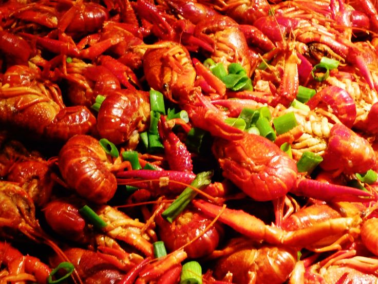 Live Crawfish, Crayfish or Mudbugs ~ Cooking Crawfish in Crawfish Season