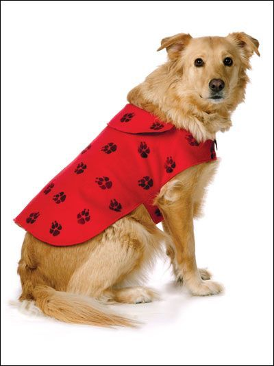 Dog's Stamp of Approval free dog coat pattern
