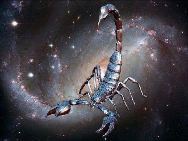 Hoy en tu #tarotgitano Horóscopo de hoy domingo 02 de octubre de 2016 para escorpio descubrelo en https://tarotgitano.org/horoscopo-hoy-domingo-02-octubre-2016-escorpio/ y el mejor #horoscopo y #tarot cada día llámanos al #931222722