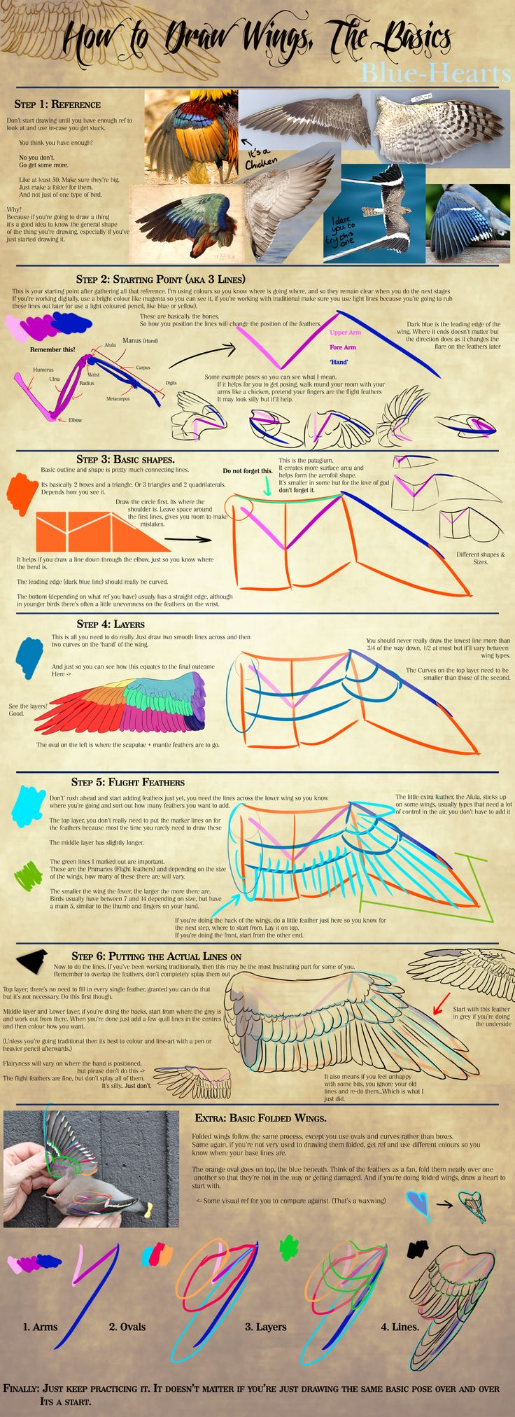 How to Draw Wings by Blue-Hearts.deviantart.com on @DeviantArt
