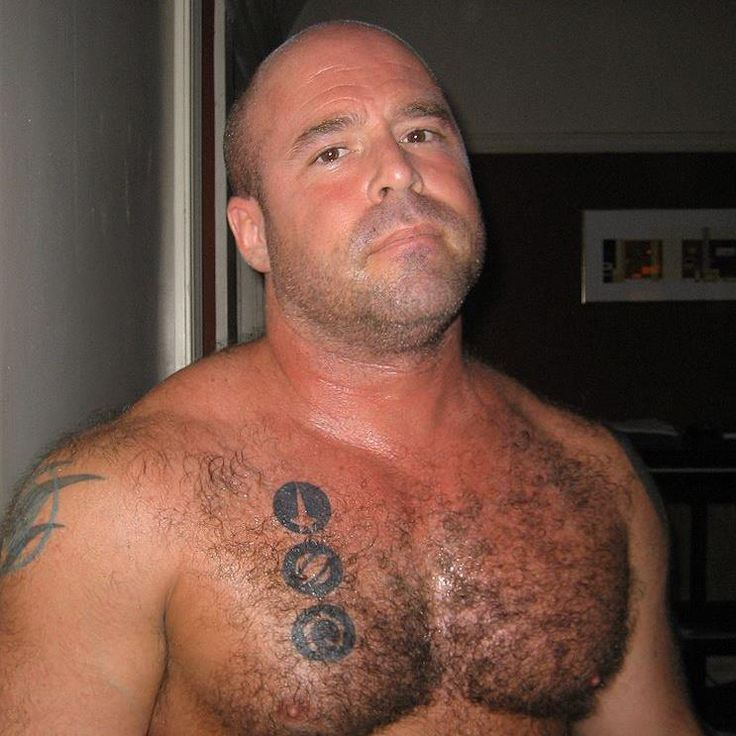 Hairy Chest Stubble Bald Alpha Daddy  Hairy Chest, Ginger -2550