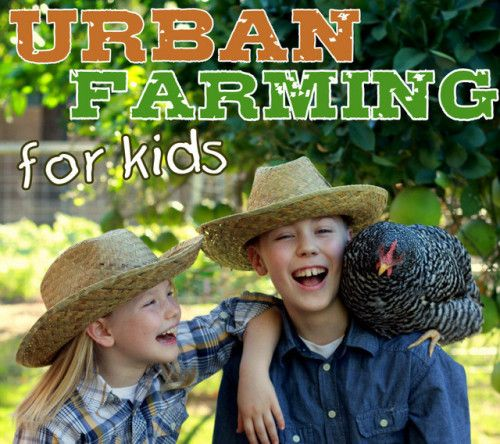 The Urban Farming for Kids class is an amazing resource for any family that is homesteading and for schools with gardening, agriculture or 4-H programs.