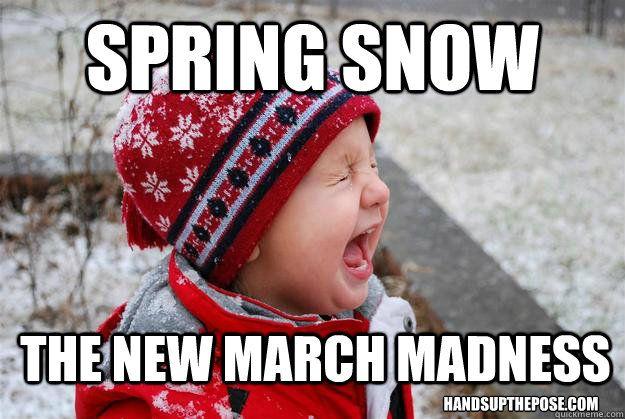 Top fifteen Spring snow memes