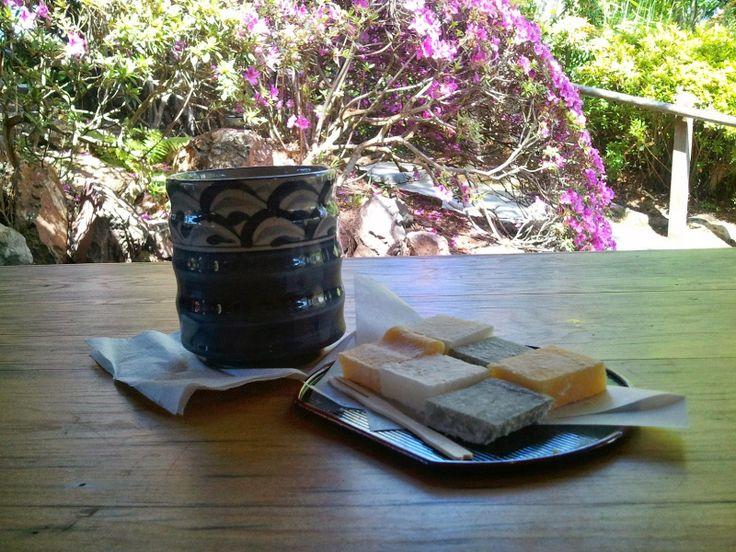 Green tea and mochi treats in San Francisco's Japanese Tea Garden.