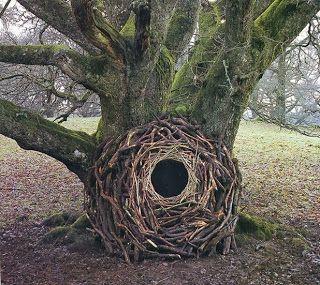 Andy Goldsworthy - Openings GCSE Art