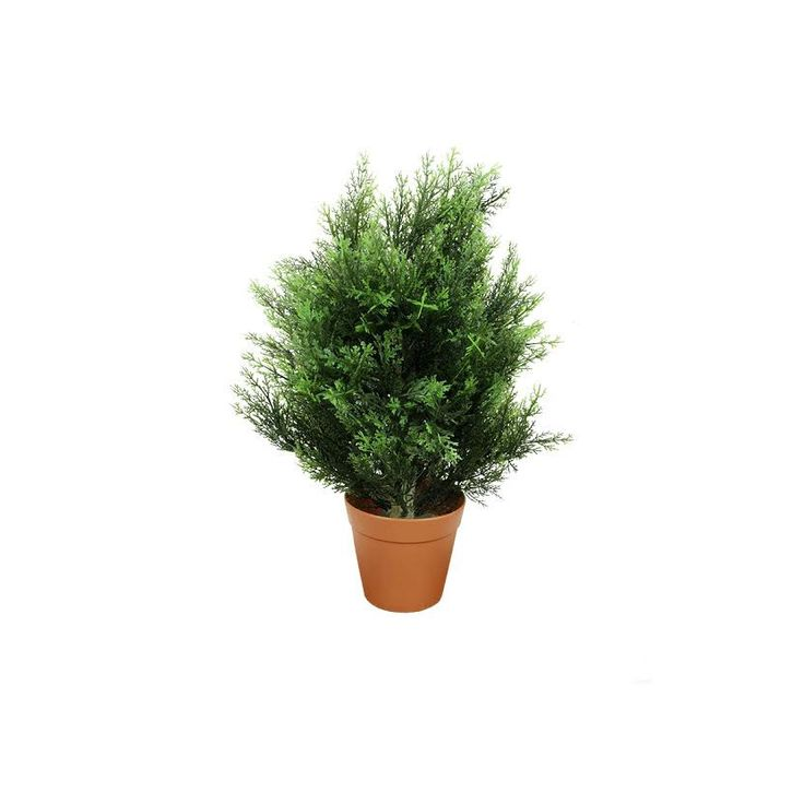 Potted Two-Tone 21 inch Artificial Cypress Plant
