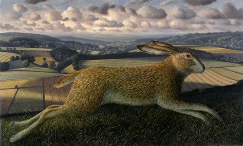 Leaping Hare, Brimsdown Hill, Wiltshire by James Lynch