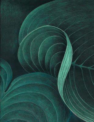 emerald green. 180 best Color  Emerald Green images on Pinterest   Emerald green