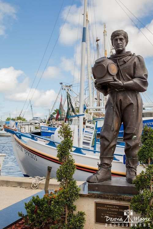 Sponge Diver Statue, Tarpon Springs, Florida In 1890, John Cheyney, a Tarpon businessman, opened the Anclote River and rock Island Sponge Company across the river from Tarpon Springs. During the 1890s, sponge-packing houses were built in the City, sponge presses were installed and buyers moved to town.  Gradually the sponge business shifted its center from Key West, Cuba and the Bahamas to Tarpon Springs.  By 1900 the City was considered the largest sponge port in the United States.