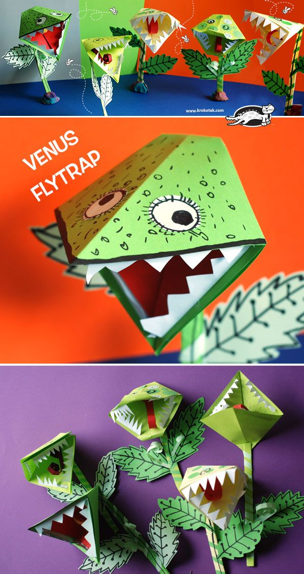 Watch our video tutorial: How to Make Paper Venus Flytrap: