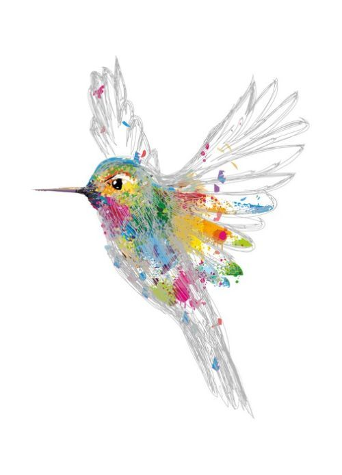 Rainbow honey-eater Living Room Décor from $44.99 | www.wallartprints.com.au #LivingRoomArt
