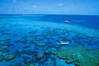 Port Douglas - Agincourt Reefs
