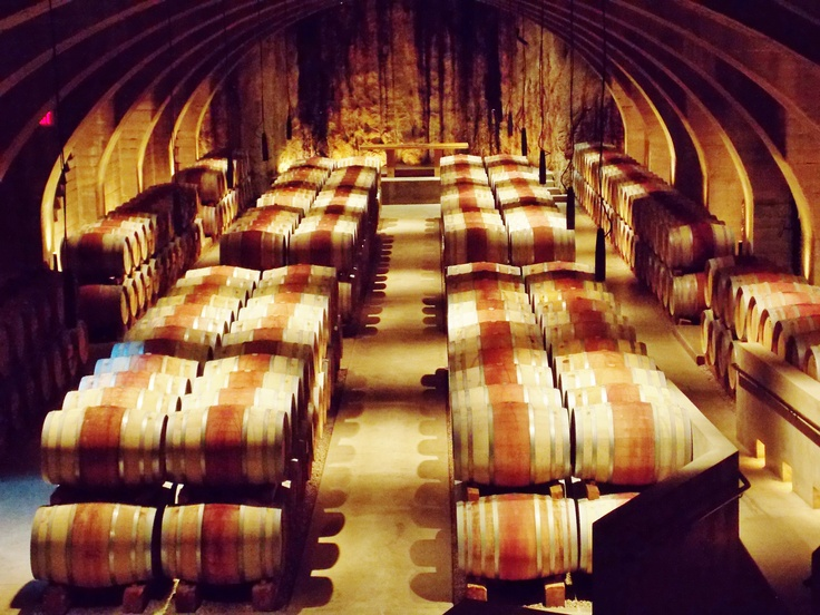 In the cellar of Mission Hill Winery