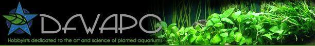 DFW Aquatic Plant Club Articles-- Beginner Basics: Computer