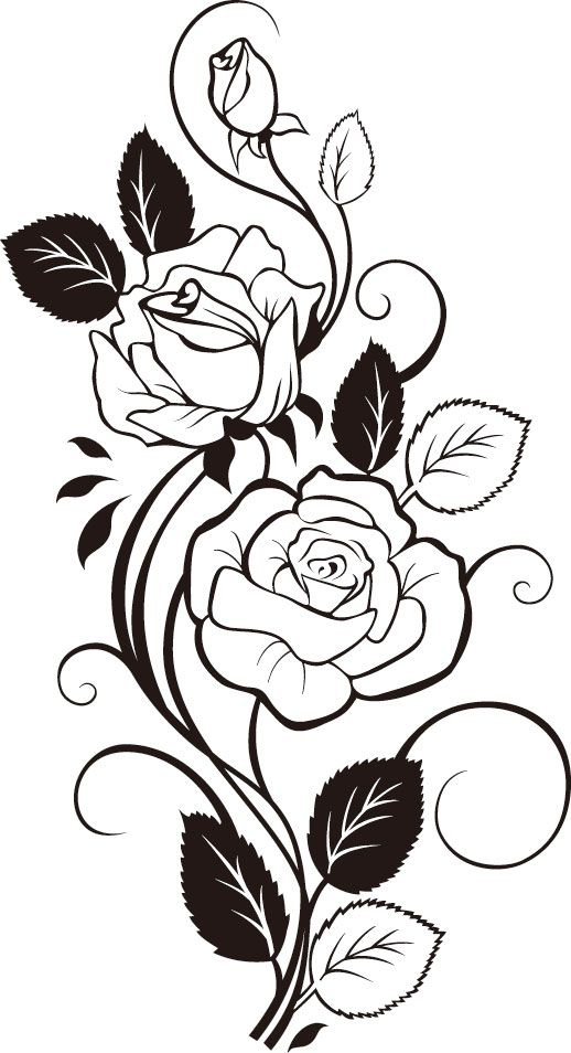 Rose Vine vector Stencil Pinterest Coloring Tattoo Roses And