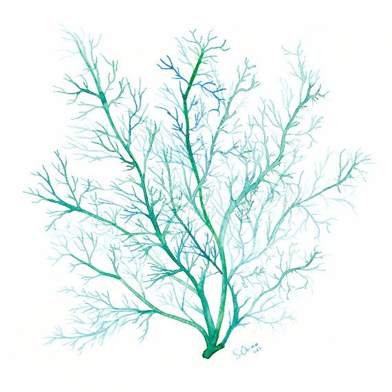 Green Coral print - Watercolor Sea Fan illustration - Sea life Fine art print