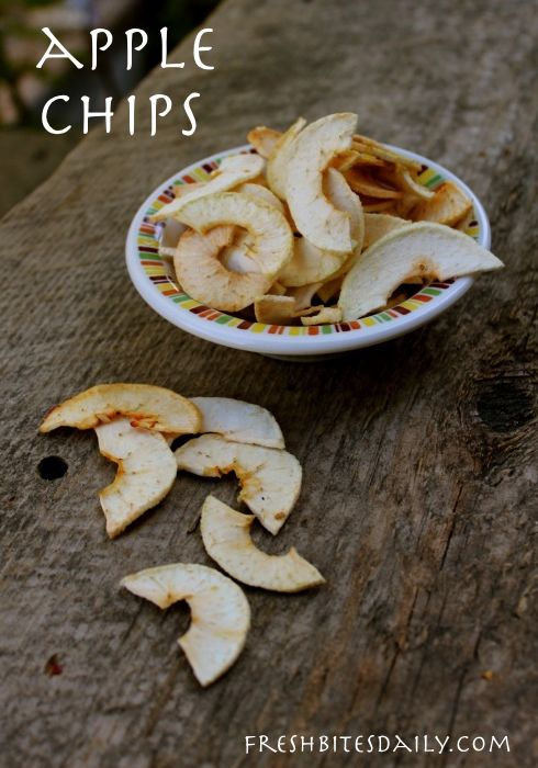 Apple chips are a great way to store apples (if you don't gobble them up first...)