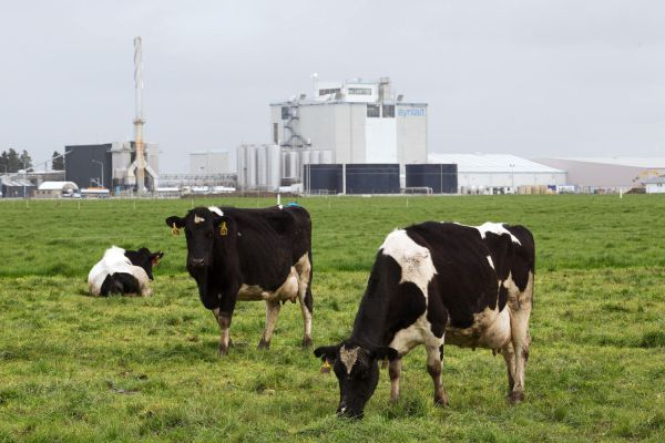 Ecocentric FOOD The Triple Whopper Environmental Impact of Global Meat Production