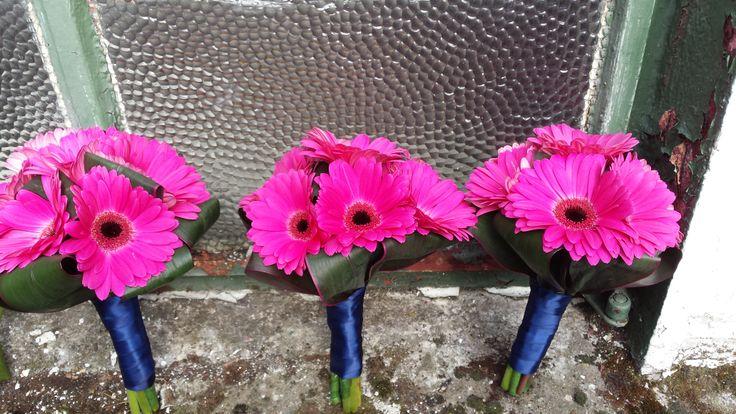 Bridesmaids bouquets of hot pink gerberas