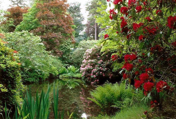 10 best images about scottish gardens on pinterest for Stobo water gardens