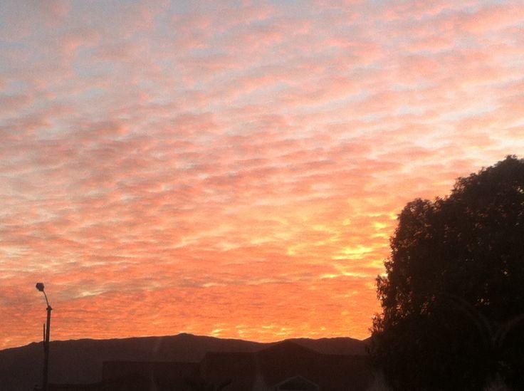 Beautiful evening sky!