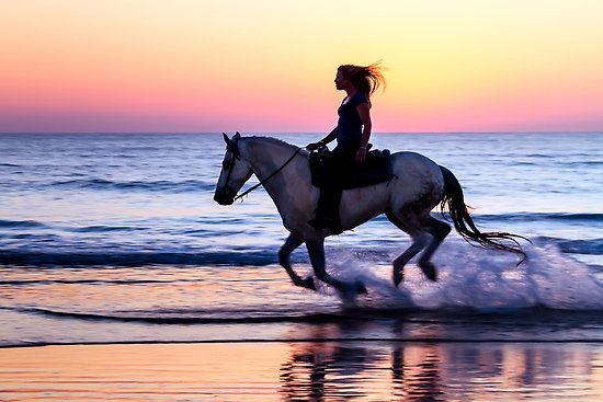 one of the most romantic things I think you can do in my opinion and I'm dying to do it! -horseback riding on the beach #MYRDreamVacation