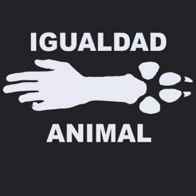 NO al maltrato animal.
