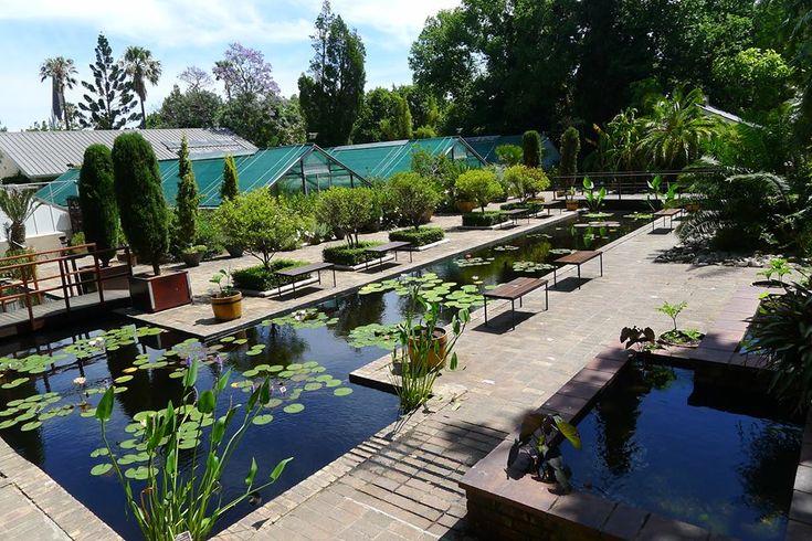 Stellenboch Botanical Gardens