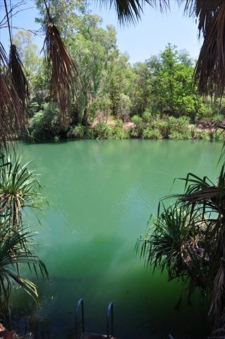 1435-pretty-river-spots.jpg (319×480)Boodjamulla (Lawn Hill) National Park