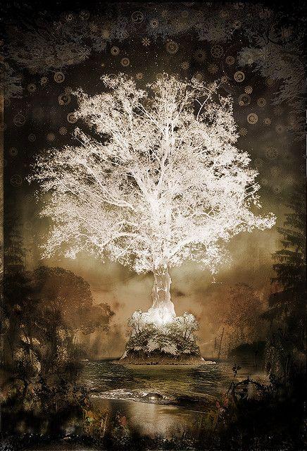 tree of eden | Garden of Eden: Tree Of Night