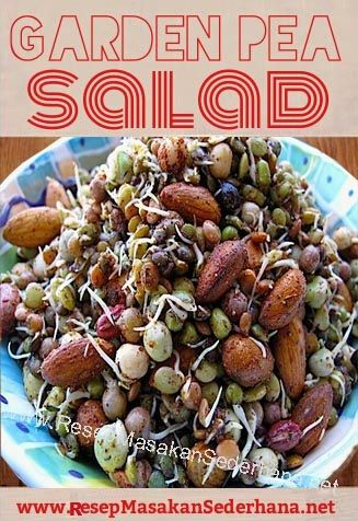 Resep Salad - Garden Pea Salad  NB : website (http://ResepMasakanSederhana.net/) kami dalam proses pembuatan  #resep#masakan#sederhana#unik#unique#enak#recipes#food#udang#pepper#salt#salad#oliveoil#mixnuts#mustard#madu