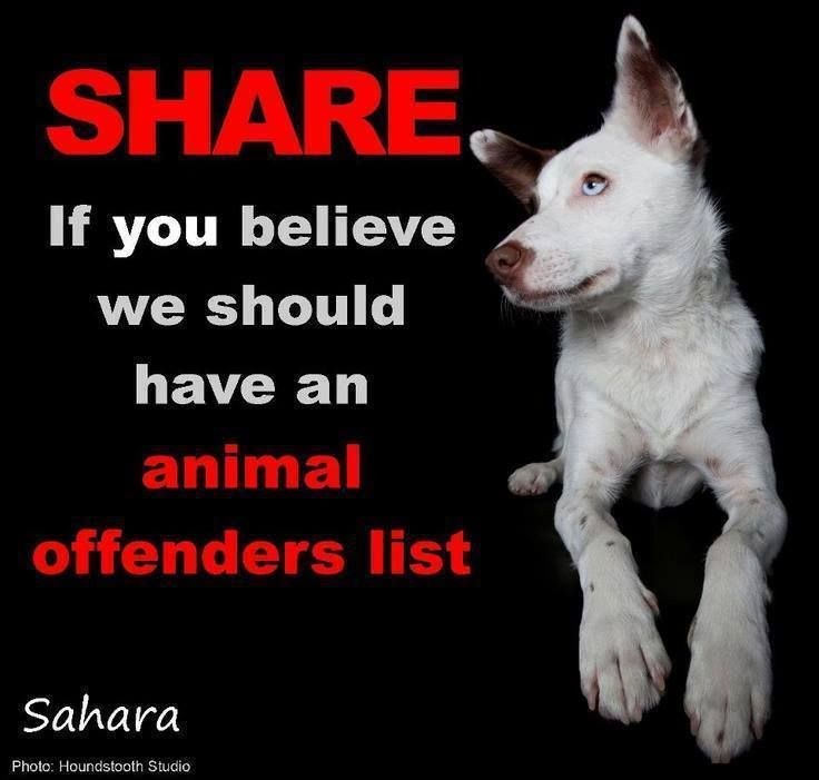 Please share, repin--tweet if you think there should be an animal offender's list! Absolutely! !!!!!