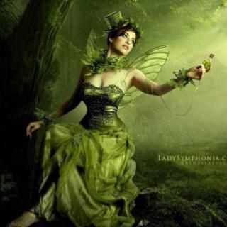 green fairy - Green Fairy Halloween Costume