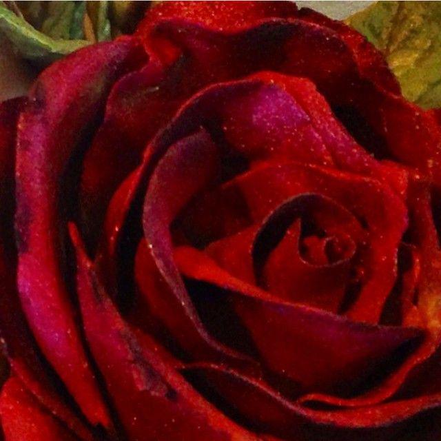 """""""Rose laget av blomsterpasta og dustet #marsipanrose #sukkerpastarose #rose #handcrafted #homemade """""""