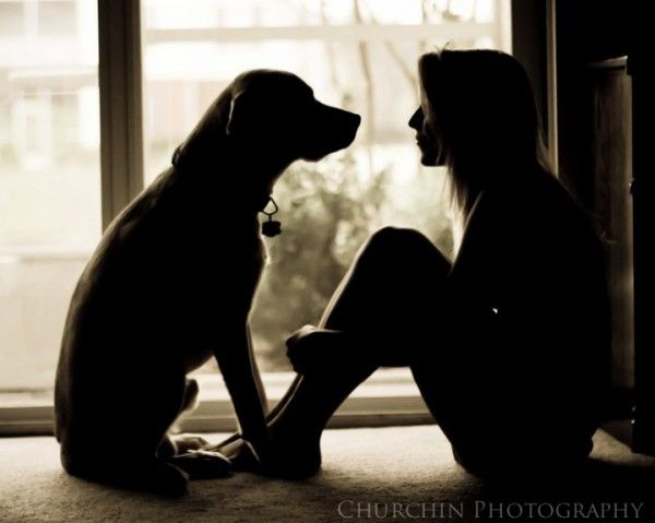 I can just feel the connection between these two, and the silhouette keeps the focus on the mood of the shot- the love felt between human and animal. There are no other visual distractions that take away from what's most important- the bond that these two share.