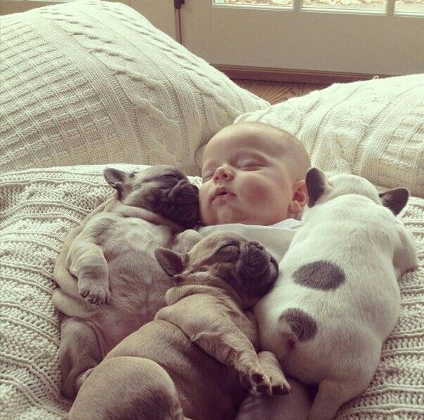 Puppys+Babbies=extreme cuteness