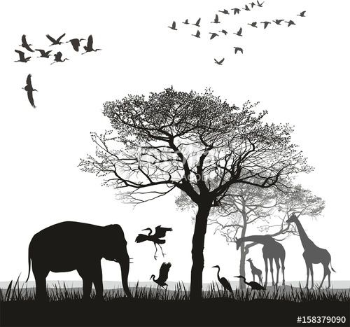 Vector: Safari with giraffes, herons, geese and the elephant