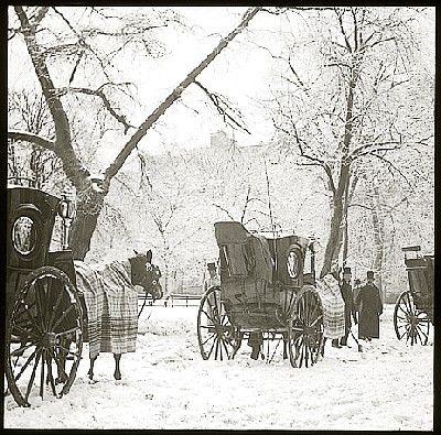 Alfred STIEGLITZ  Central Park    1894