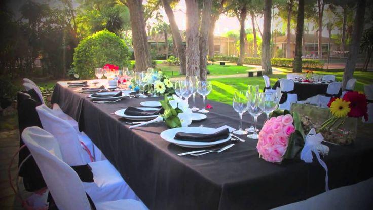 El Oasis villa rental & events