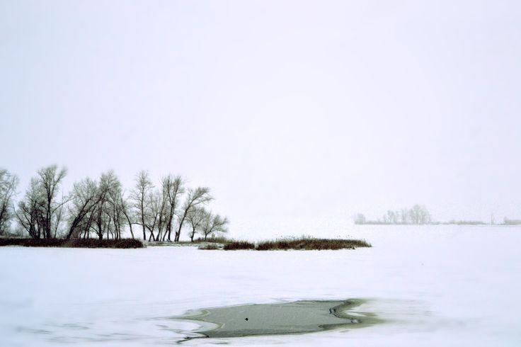 River Volga 2016