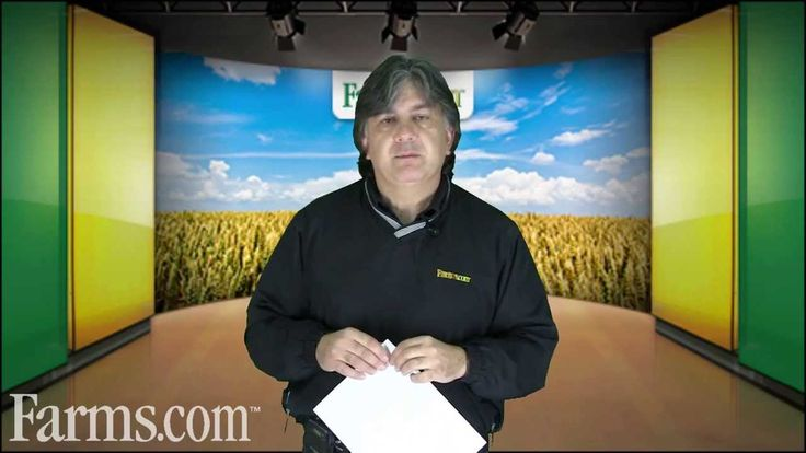 USDA WASDE Reports: Slightly Bullish for Soybean Prices, Neutral Corn, Bearish Wheat Prices. Moe Agostino, Senior Commodity Marketing Strategist from Farms.com Risk Management reviews the November USDA World Agriculture Supply and Demand Estimates Report.  For more information visit http://www.farms.com/markets