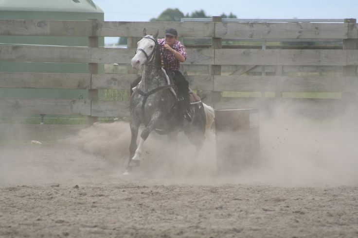PaleFace 2007 Huntly Rodeo grounds