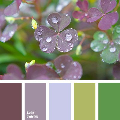 Violet colour gradually changes into a colour of young grass. Cold and at the same time very fresh shades. This combination of colours can be successfully used in a bedroom interior design. You can variegate a demi-season wardrobe for a person of any age and gender with this hues.