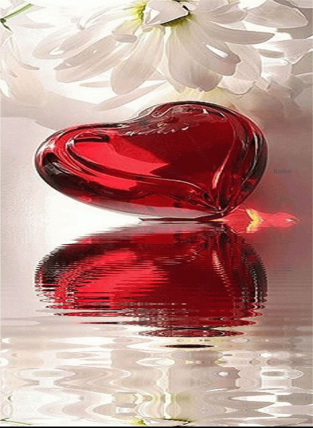 RED HEART WATER REFLECTION GIF