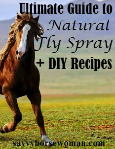 Find the top rated natural fly sprays for horses, plus DIY homemade recipes using essential oils.
