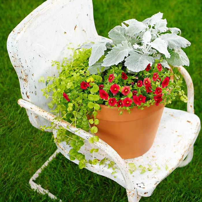 Make It A Pedestal For A Small Garden. See 9 More Container Garden Ideas.     Loweu0027s Creative Ideas See Movable Magic This Arrangement Is For Sun Or  ...