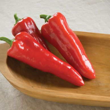Carmen ORGANIC Pepper Seeds (Capsicum annuum) + FREE Bonus 6 Variety Seed Pack - a $30 Value!